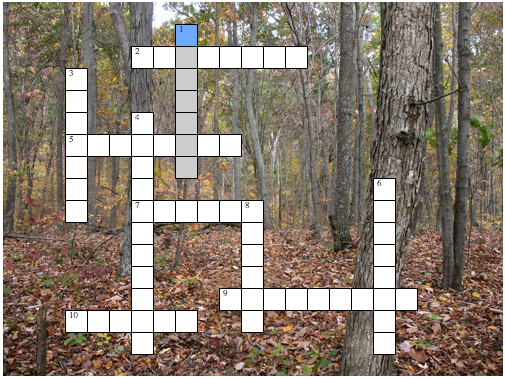OIQ-crossword-woodland-habitat