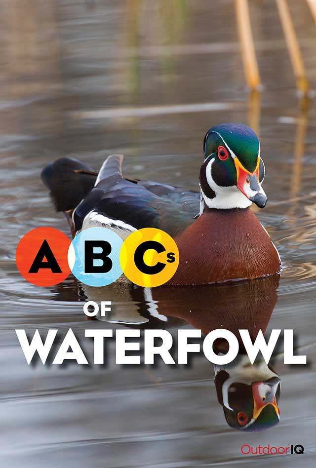 OutdoorIQ: ABCs of the Waterfowl - front cover
