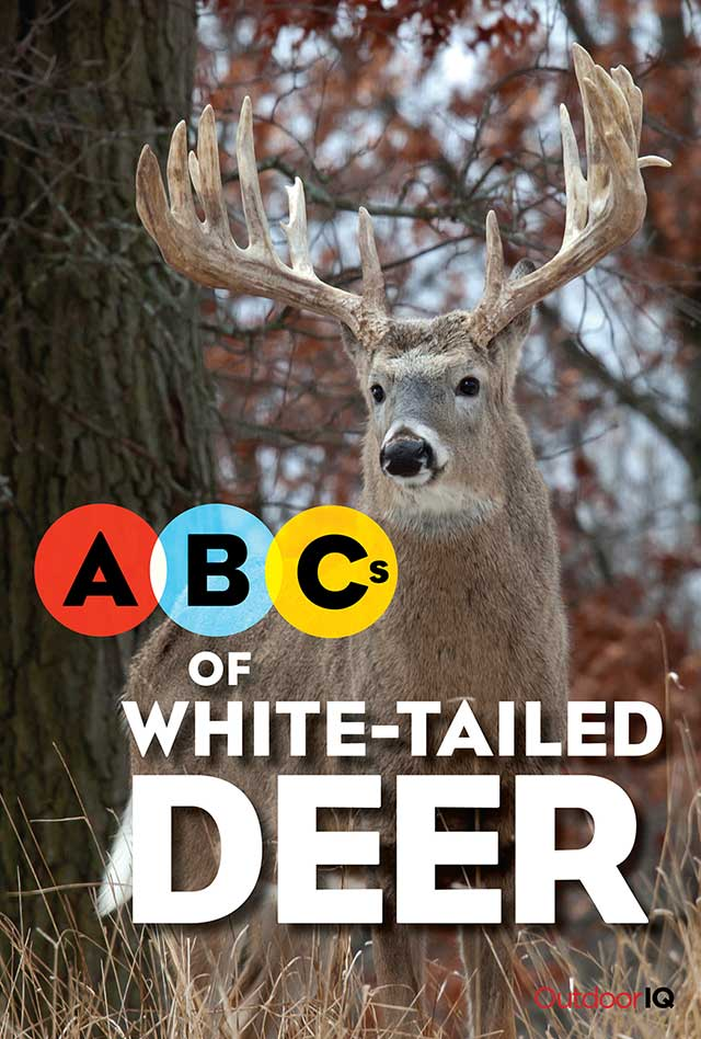 OutdoorIQ: ABCs of the White-Tailed Deer - front cover