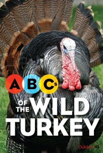 OutdoorIQ: ABCs of the Wild Turkey - front cover