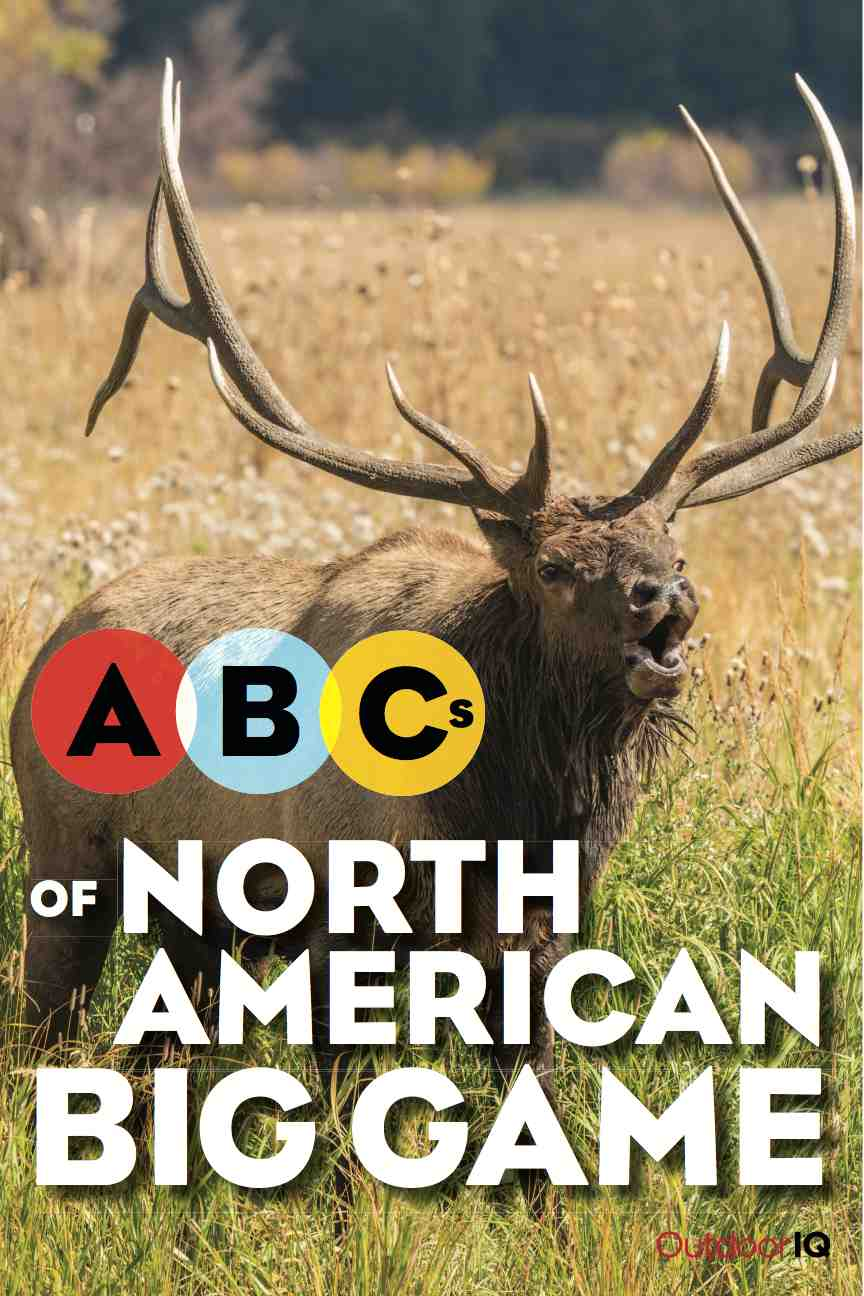 OutdoorIQ's book: ABCs of North American Big Game by Dave and Steve Shellhaas - front cover